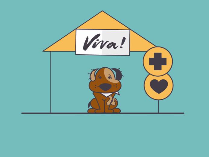 Animacja 2d Viva